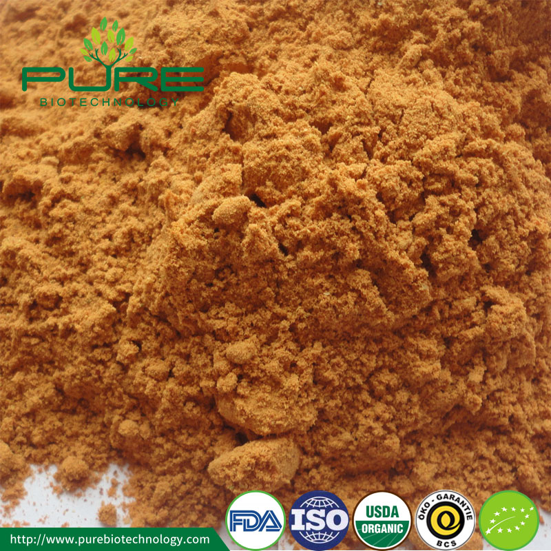 FD Certified Organic Freeze Dried Goji Powder