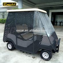 Schließen Sie 2-Sitzer elektrische Golfwagen Ball abholen Wagen elektrische Buggy Auto