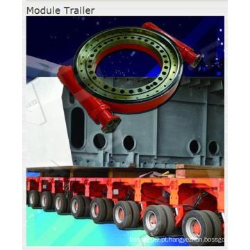 Drives de giro usados para trailer de módulo (M14 polegadas)