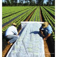 5%UV Spunbonded fabrics row covers