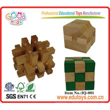 Wooden Fashion IQ Puzzles Game - DIY Educational Toys