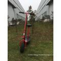 Twist-Grip Acceleration Control Razor Model Scooter for Electric (LT JE200)