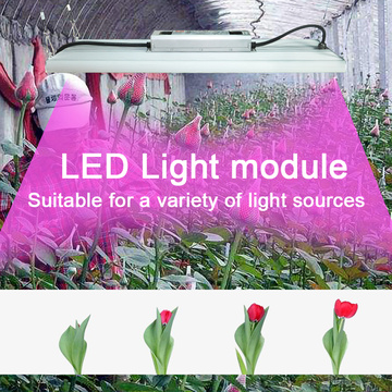 Квантовая плата Grow Light Samsung 561C High Ppfd