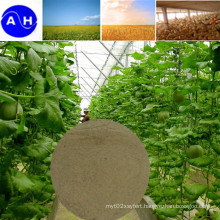 Sulfuric Acid Hydrolysed Amino Acids Free From Chloridon Vegetable Amino Acids