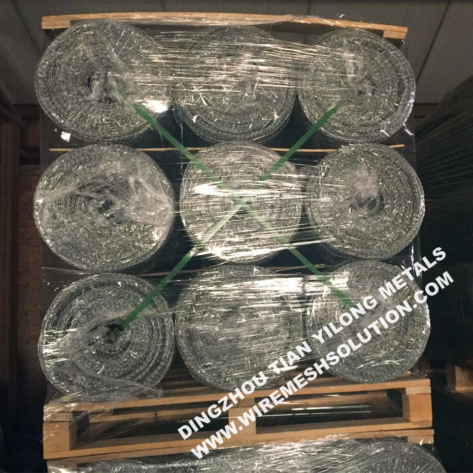 Galvanized After Weaving Hex Wire