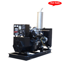 Generador Diesel Self Start (BIS20D)