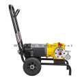 ED700 Membran Airless Sprayer