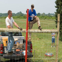 Best Price Farm Fence & Safety Mesh Fence