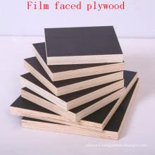 Black Film Faced Plywood / Shuttering Plywood / Marine Plywood