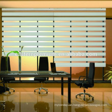 Elegant House Decoration Window Motorized Zebra Blinds