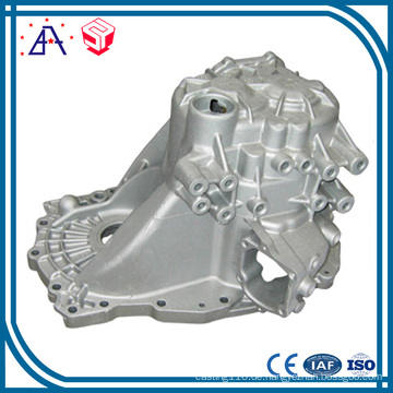 China OEM Hersteller Druckguss (SY1289)
