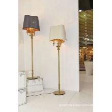 Contemporary Elegant Decorative Floor Lighting for Home (1142F)
