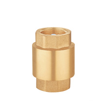 1/2 - 4 Inch Good Price Water Vertical Small Spring Flap Brass Check Valve