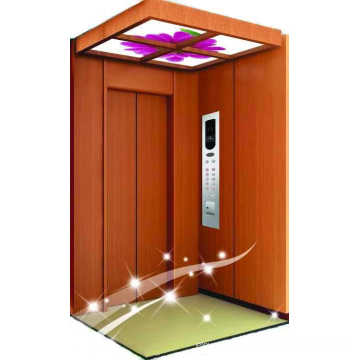 VVVF control small home lift villa elevator