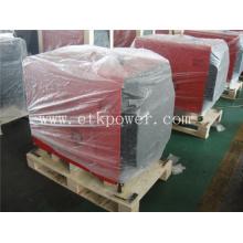 Generador diesel silencioso del color rojo 5kw (DG6LN)