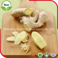 150g up Fresh Young Ginger