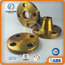 ANSI B16.5 Class 300lb Carbon Steel Blind Flanges with Ce (KT0207)