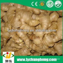2014 new crop air-dried ginger for sale