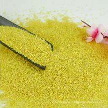 exportador de painço amarelo glutinoso