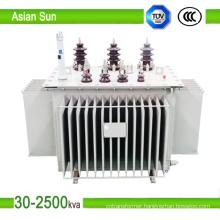 10kv 30kVA ~ 1600kVA Series Oil Immersed Power Distribution Transformer