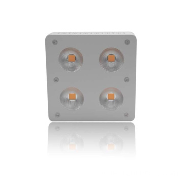 230W COB High PAR Full Spectrum LED Grow Lighting