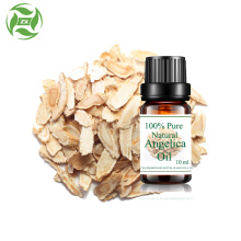 Aceite esencial de raíz de angélica de hierbas chinas naturales al por mayor