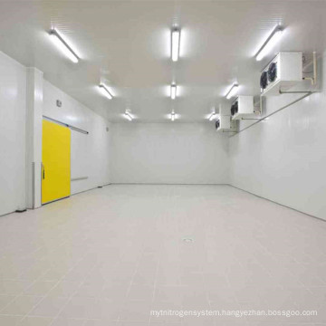 CACR-7 2017 Controlled Atmosphere Storage Cold Room for Fish