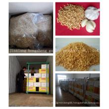 Fried Garlic Granules From Jinxiang Shandong of China