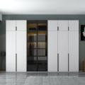 Glass door panel wardrobe