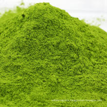 Air Dried Dehydrated Spinach Powder