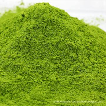 Air Dried Dehydrated Spinach Powder
