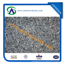 Galvanized Roofing Nail/Umbrella Head Coil Roofing Nail