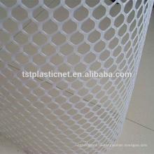 птицефабрики сетки/ гексагональной проволочной сеткой