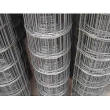 Welded Wire Mesh/Concrete Reinforcement Welded Wire Mesh/Fence