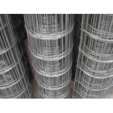 Welded Wire Mesh/Concrete Reinforcement Welded Wire Mesh/Fence