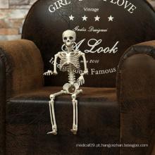 Esqueleto, crânio, mão, realista, corpo humano, anatomia, posicionável, modelo, festa