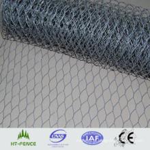 Galvanizado Hexagonal Wire Mesh (malha de arame de galinha) (HT-G-004)