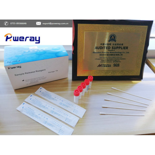 Diagnose-Schnelltest-Kit China Nuclic Acid Extraction Kit Probenaufbewahrungsreagenz