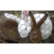Rabbit Proof Wire Mesh Fencing