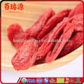 Venta caliente secado goji baya Goji bayas goji anti-cáncer de alimentos