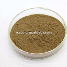 bodybuilding supplements Foti Extract Powder,Foti