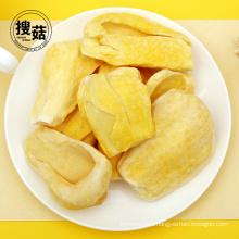 Pure natural organic freeze dried food jackfruit slices