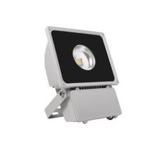 Projecteurs LED jardin ES-60W