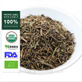 Japan Organic Hojicha Bulk Bancha al por mayor