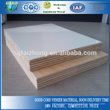 18mm HPL Plywood For Furniture