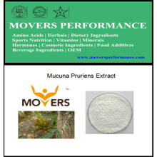 Natural Extract: Mucuna Pruriens Extract, Levodopa 98% (L-Dopa)