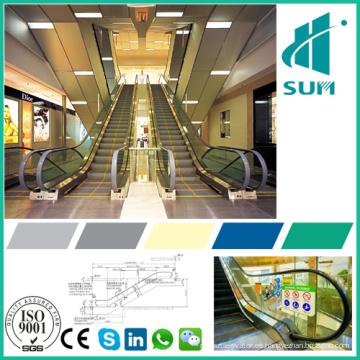 Escaleras mecánicas de seguridad con elevador de precio competitivo