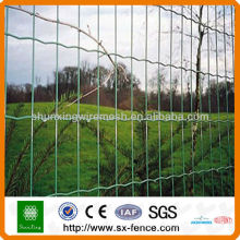 Anping High Quality PVC Coated Holland Fence with Low Price