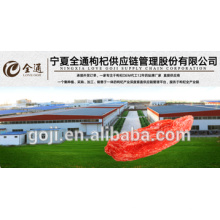 2016 nueva cosecha GOJI BERRIES ---- fábrica profesional