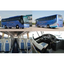 Туристический автобус Sinotruk HOWO Diesel с минимальной ценой
